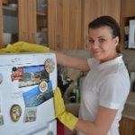 Cleaning the freezer door
